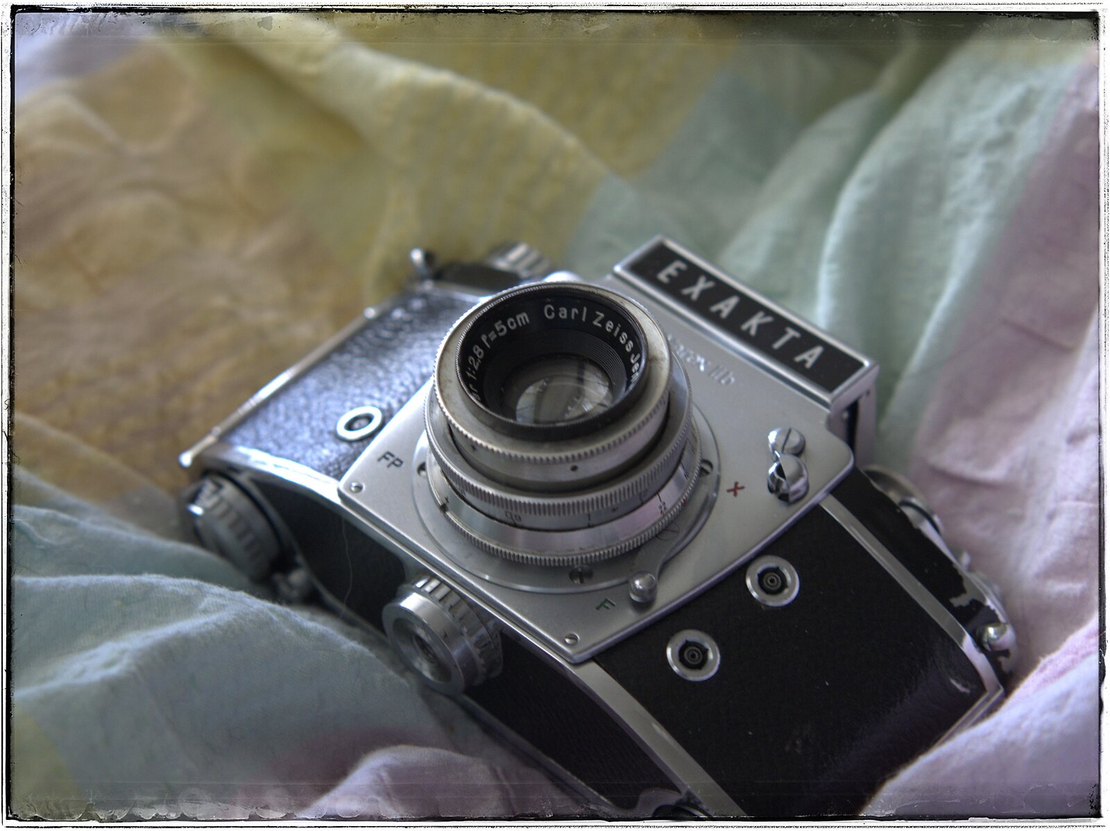 P6050036_DCRAW-01.jpeg
