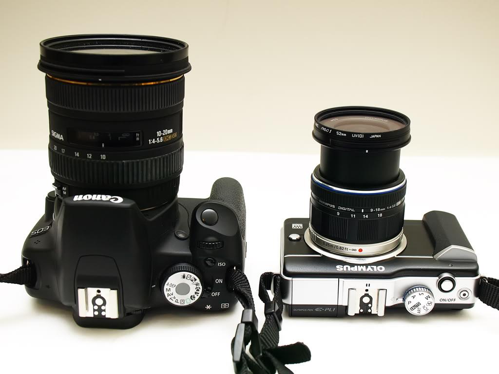 P8274810-PR.jpg