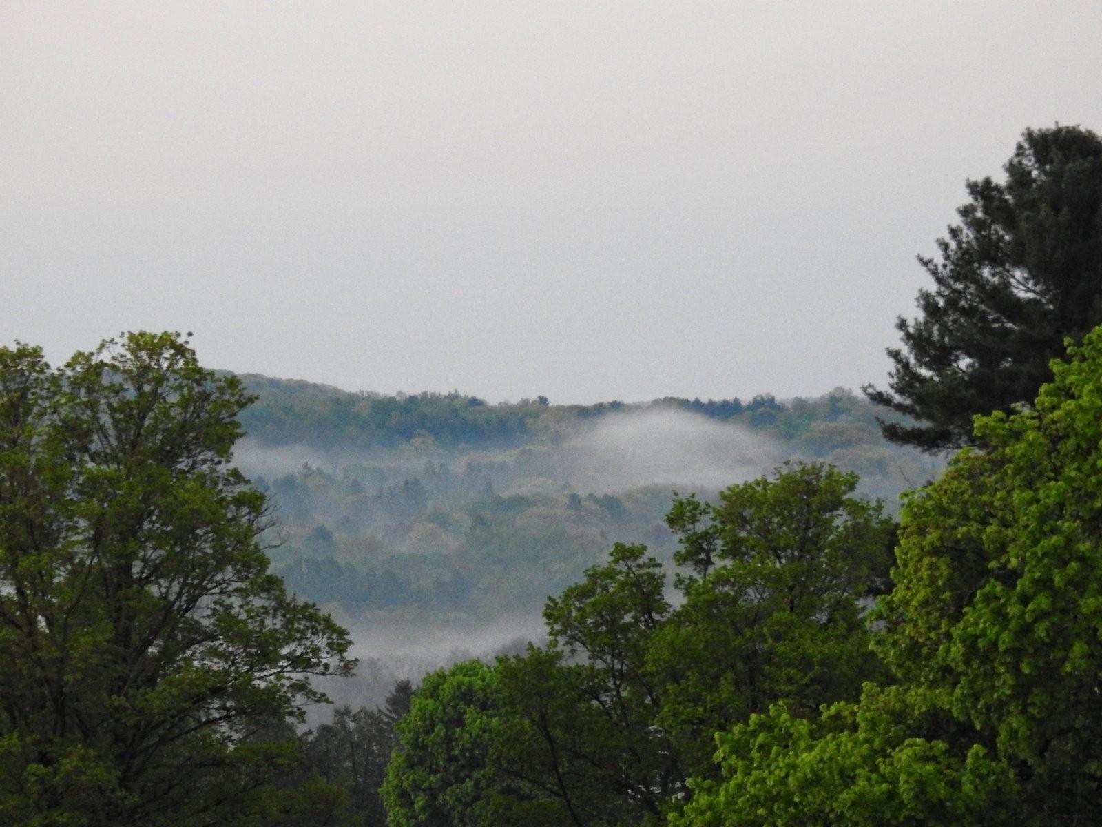 P900 Sunrise and fog at St. Mary's Cemetery 008 copy.jpg