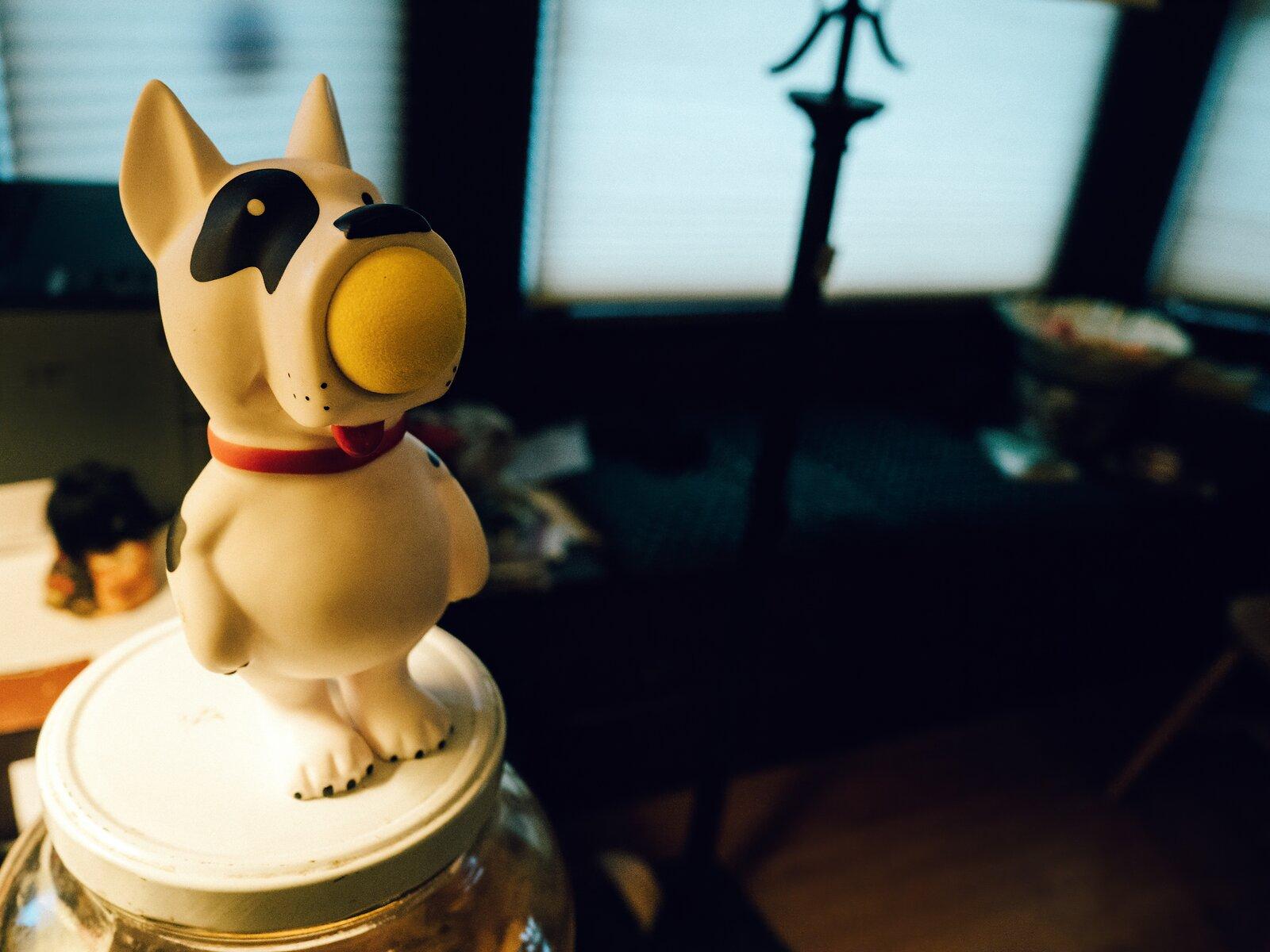PenF_Jan7_21_dog_toy.jpg