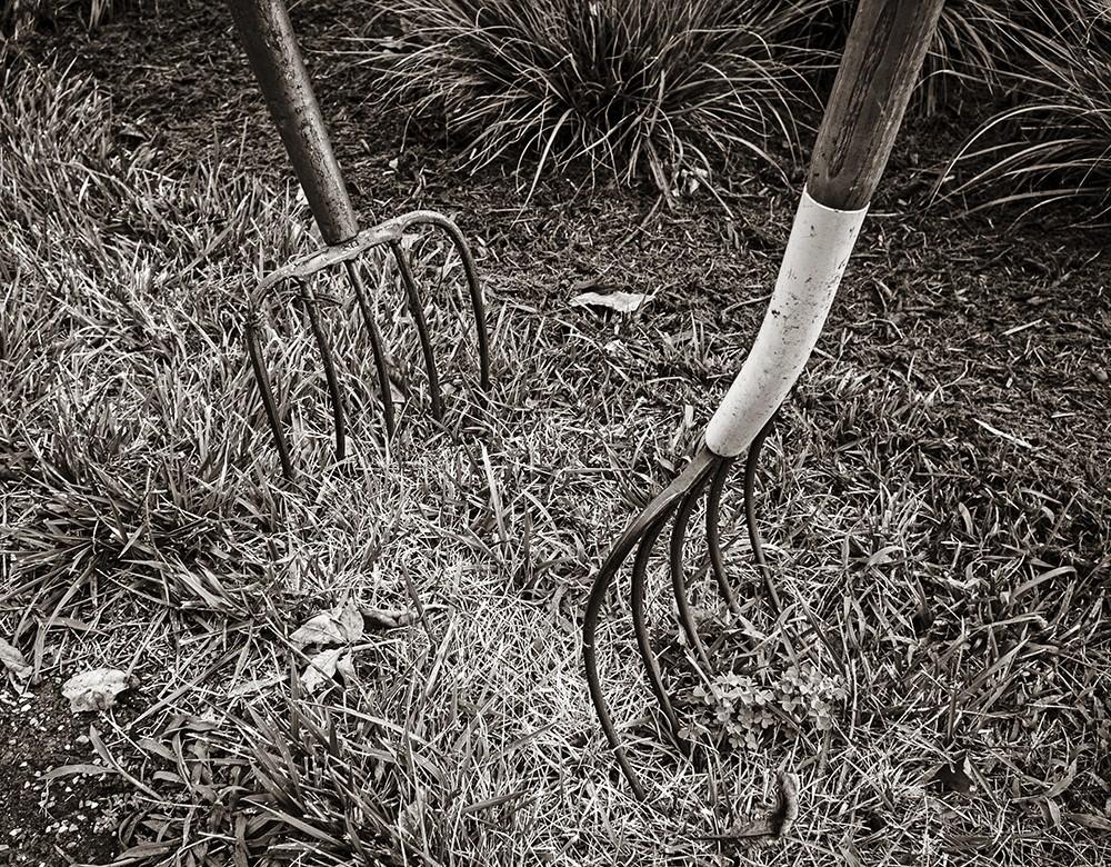 pitchforks.jpg