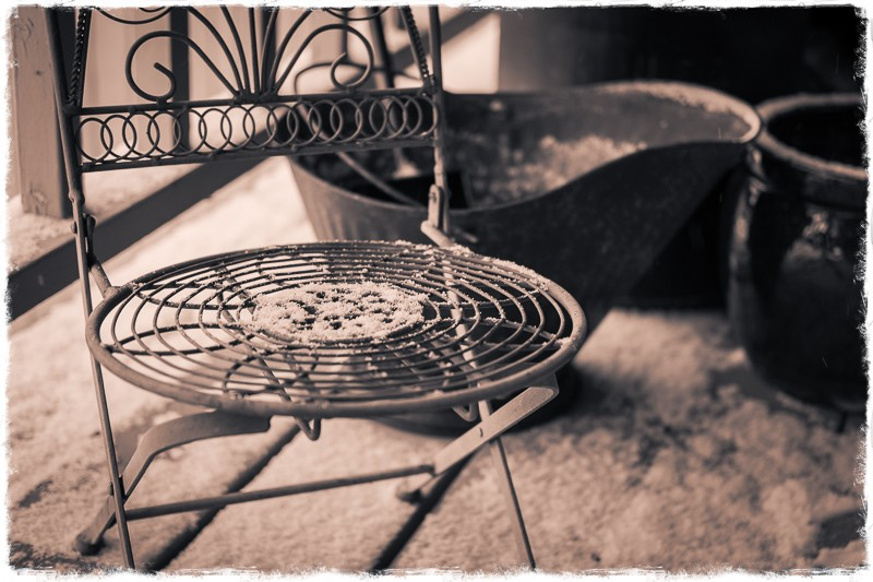 Plant Chair (1 of 1).jpg