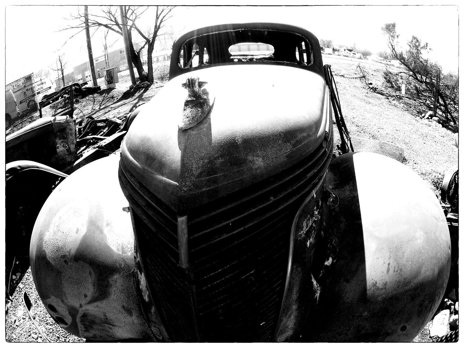 Q7_Mar3_21_Studebaker(bold_mono).jpg