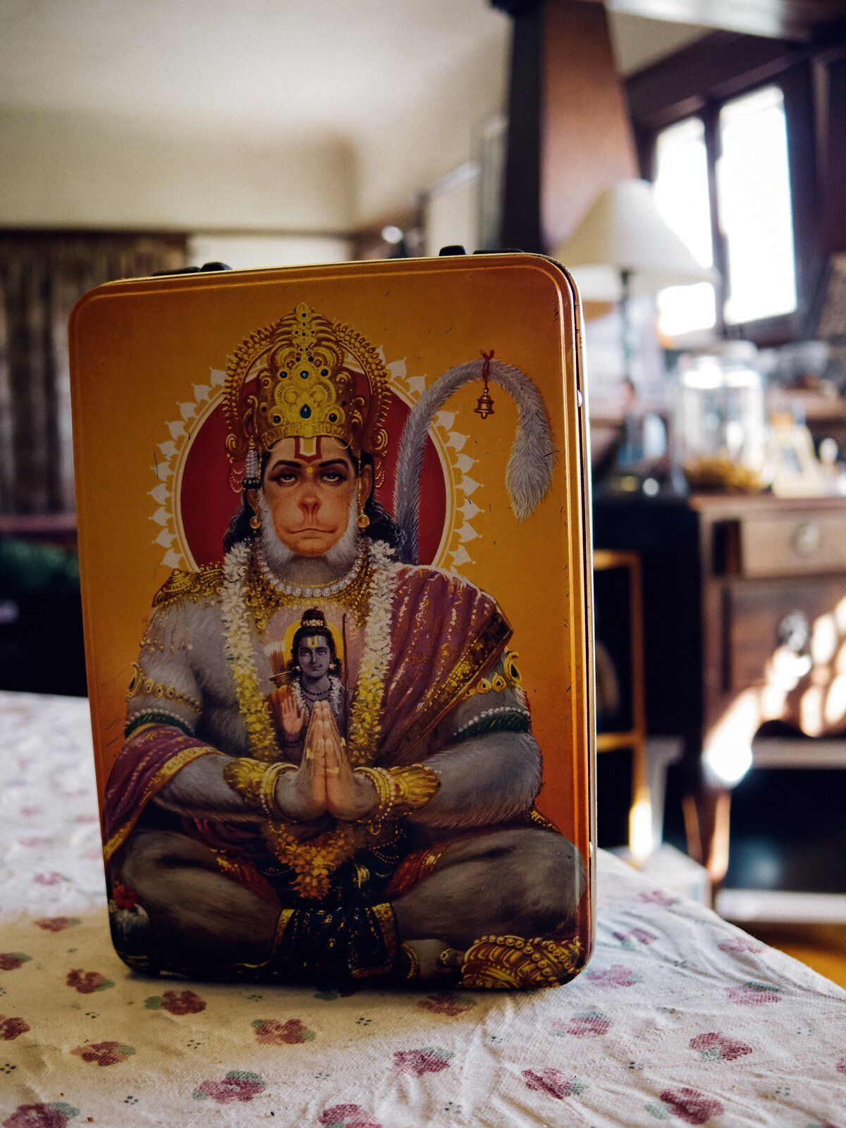 Q7_Mar6_21_Hanuman_lunchbox.jpg