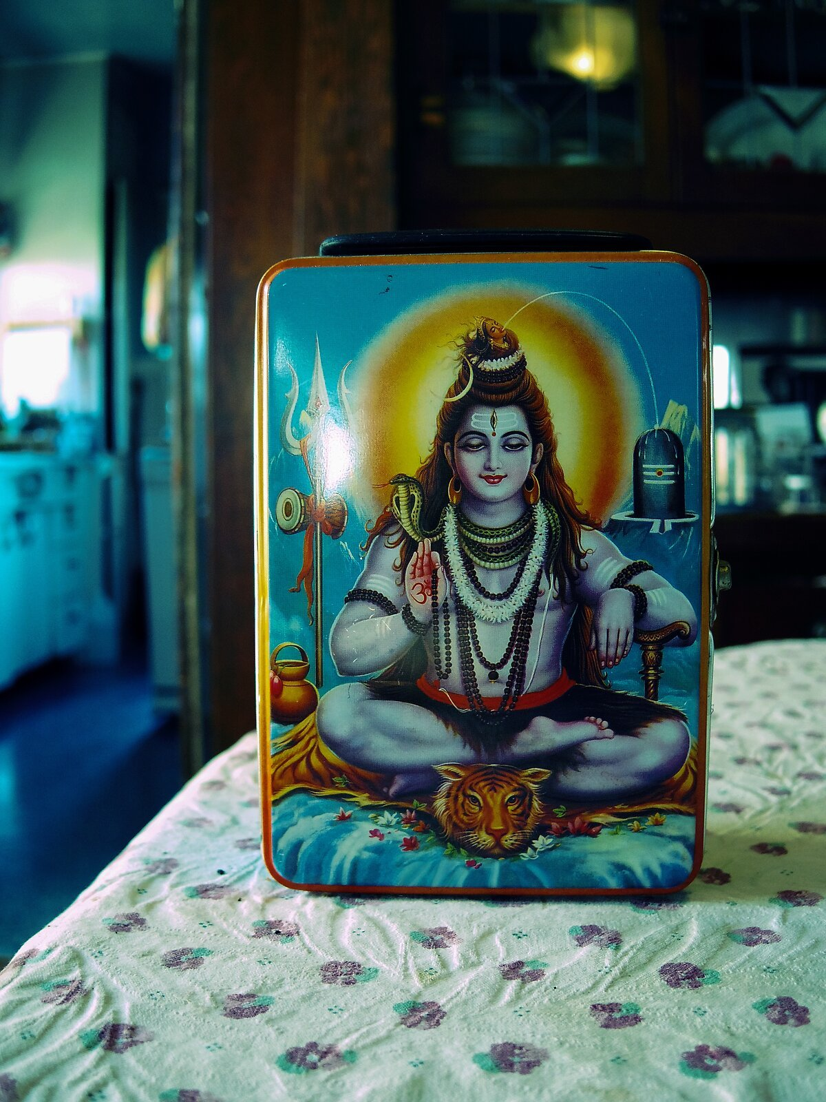Q7_Mar6_21_Shiva_lunchbox(XP).jpg
