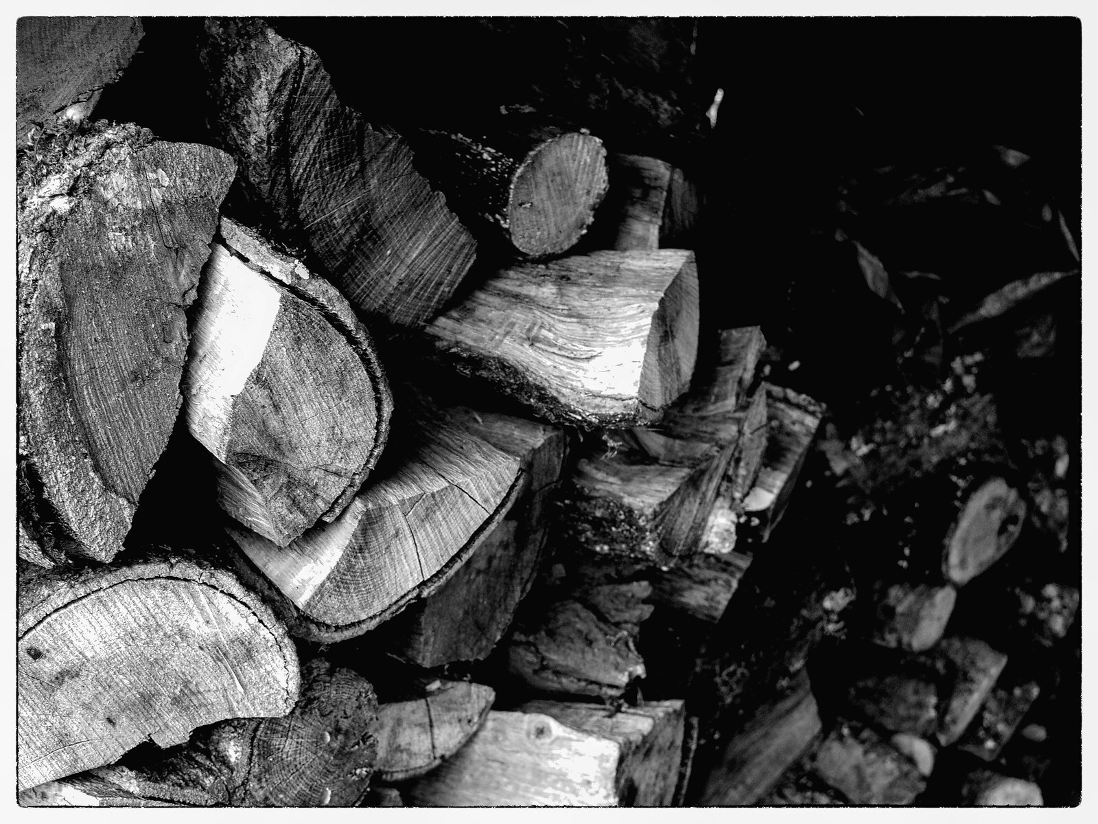 Q7_Mar9_21_wood_shed#2.jpg