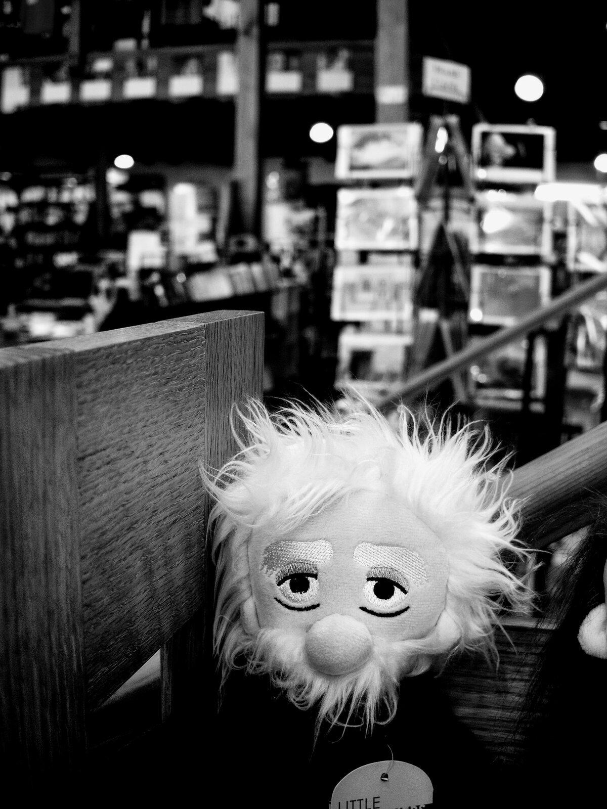 Q7_Sept9_21_Einstein_puppet.jpg