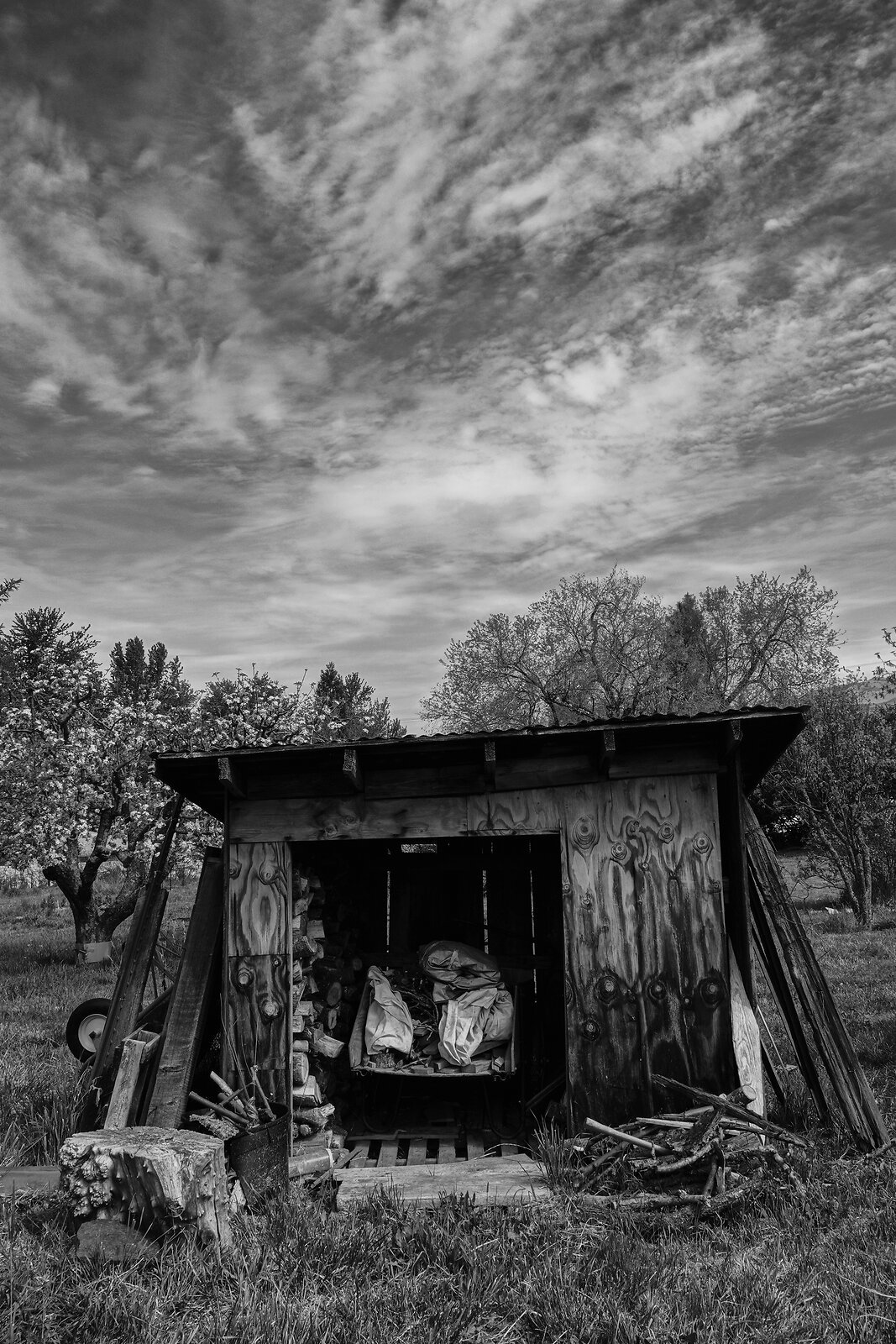 RX10_Aor23_21_wood_shed+clouds.jpg