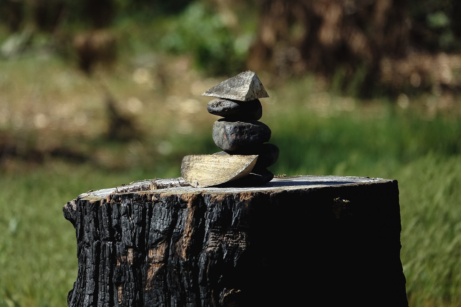 RX10_Apr17_21_stones_on_tree_stump#1.jpg