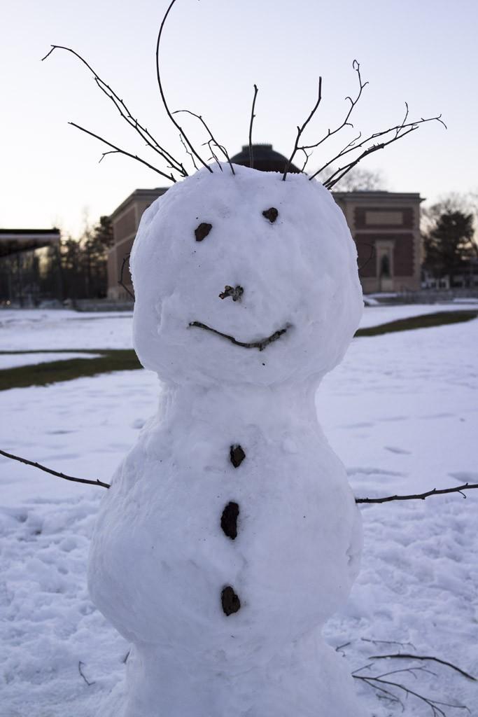 rx1_snowmam.jpg