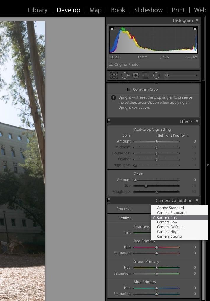 Screen Shot.JPG