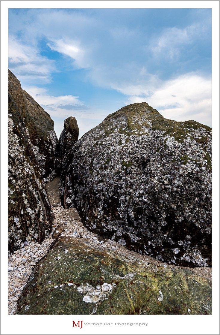 shell rock-1.jpg