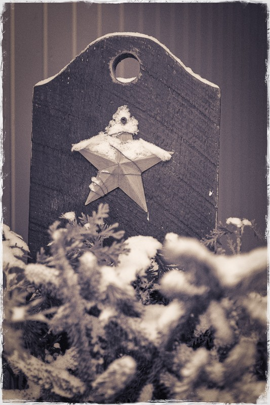 Snow with Star(1 of 1).jpg