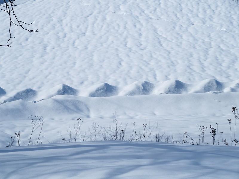 snowaves-L.jpg