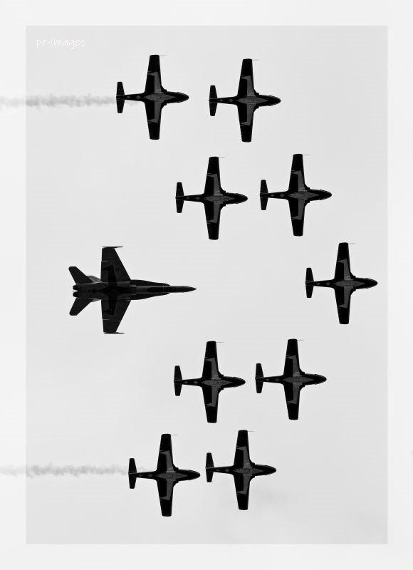 Snowbirds F18 UBC.JPG