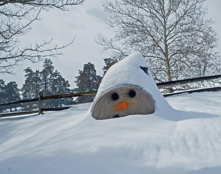 snowman1-L.jpg