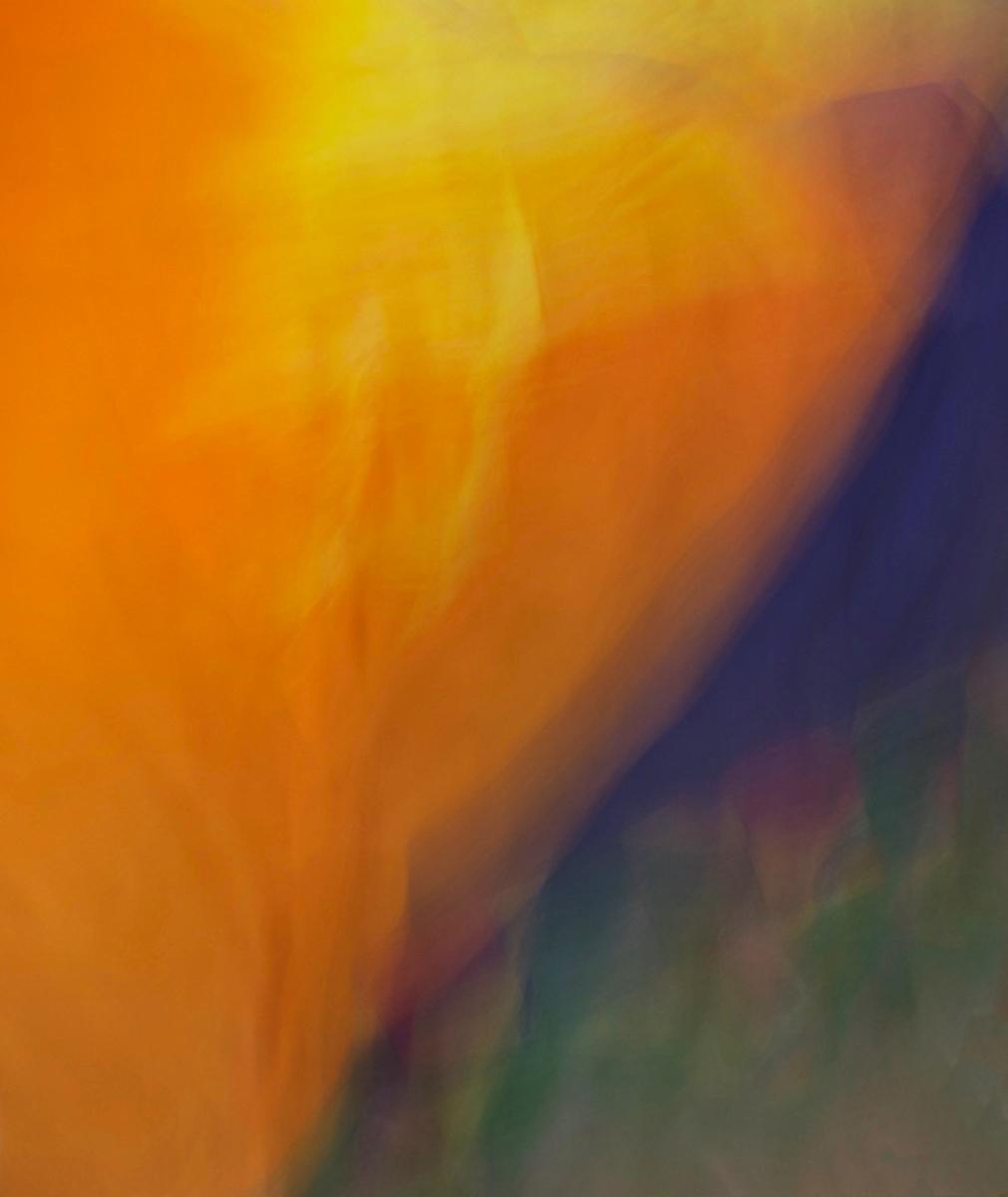 Splashes of Color.jpeg