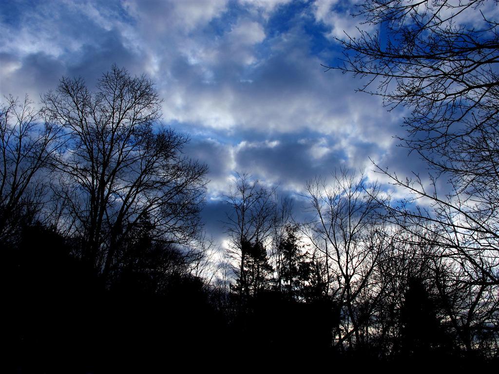 still_more_skies_010_3_Medium_.JPG