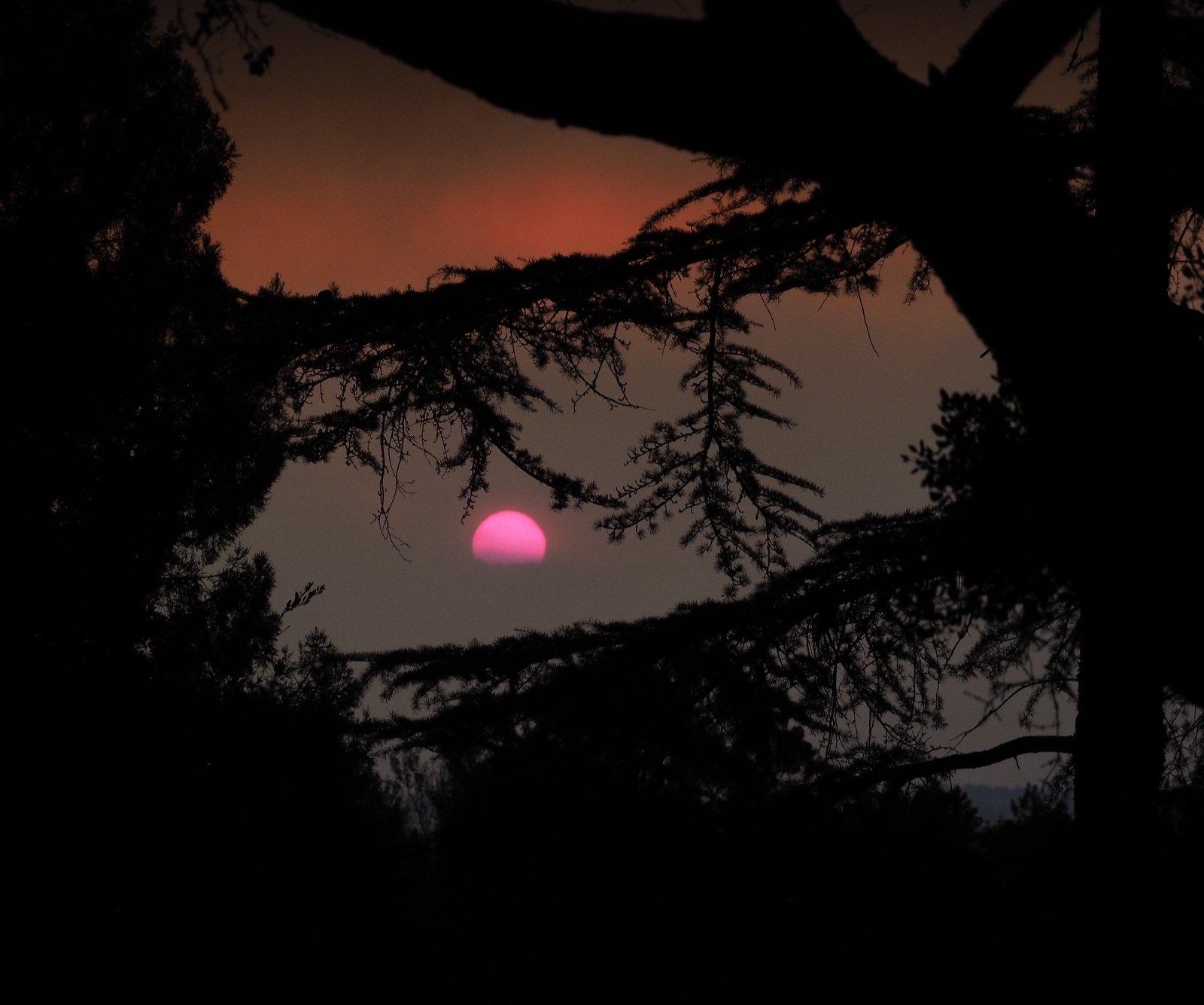 sun_rising.jpg