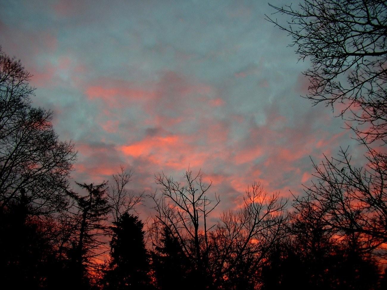 sunrise111004.jpg