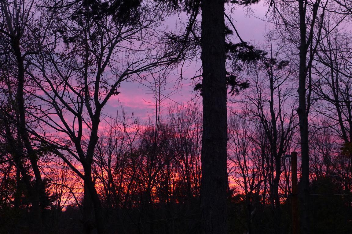 Sunset_003_Medium_.JPG