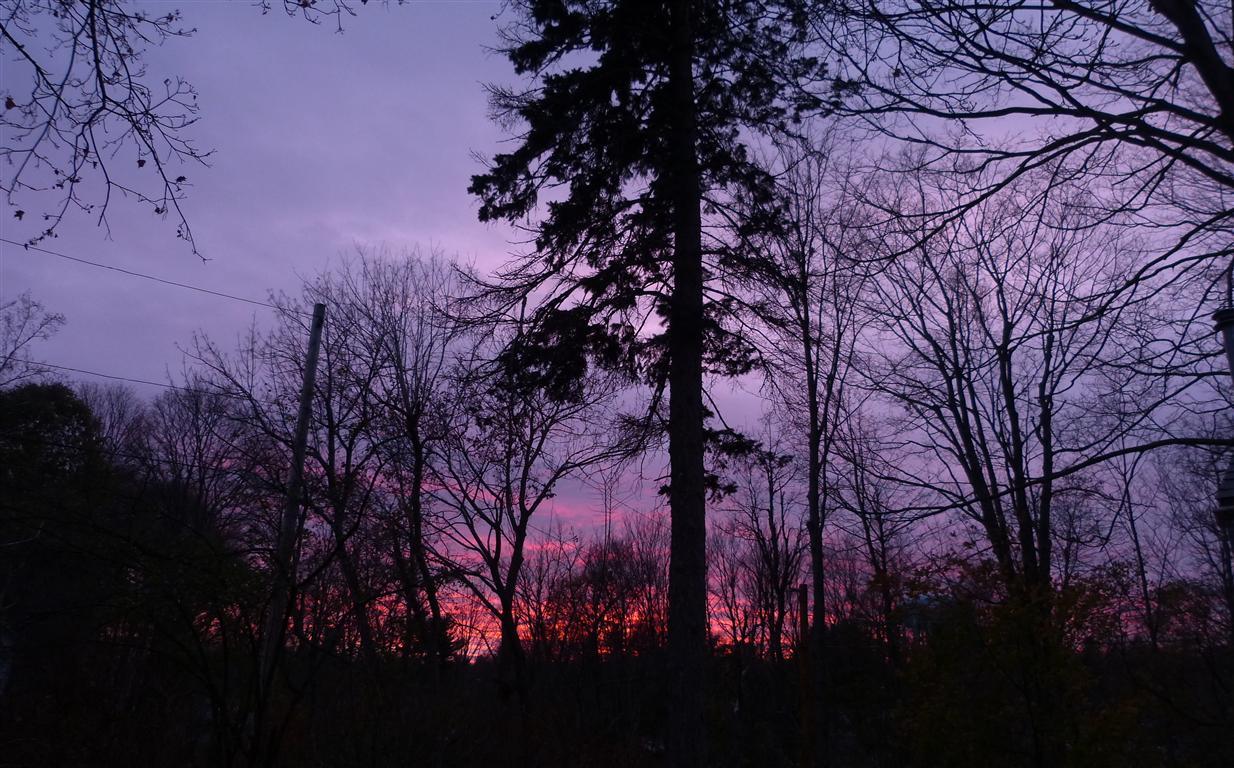 Sunset_004-001_Medium_.JPG