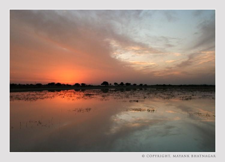 sunset_sambhar_lake10.jpg