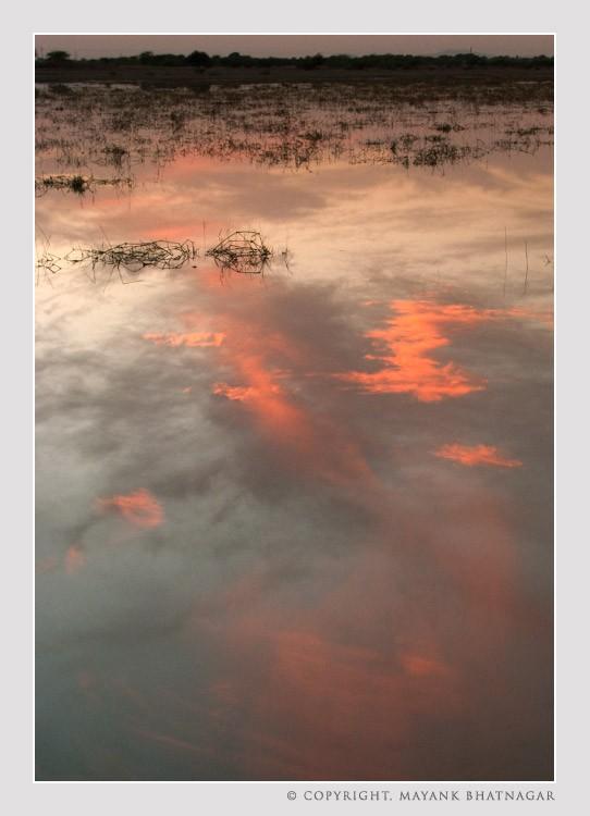 sunset_sambhar_lake4.jpg