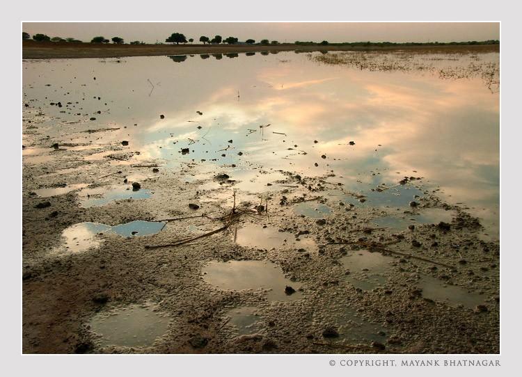 sunset_sambhar_lake5.jpg