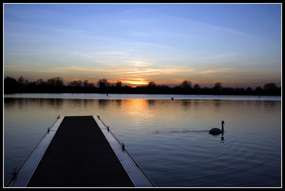 Sunset_with_swan.jpg