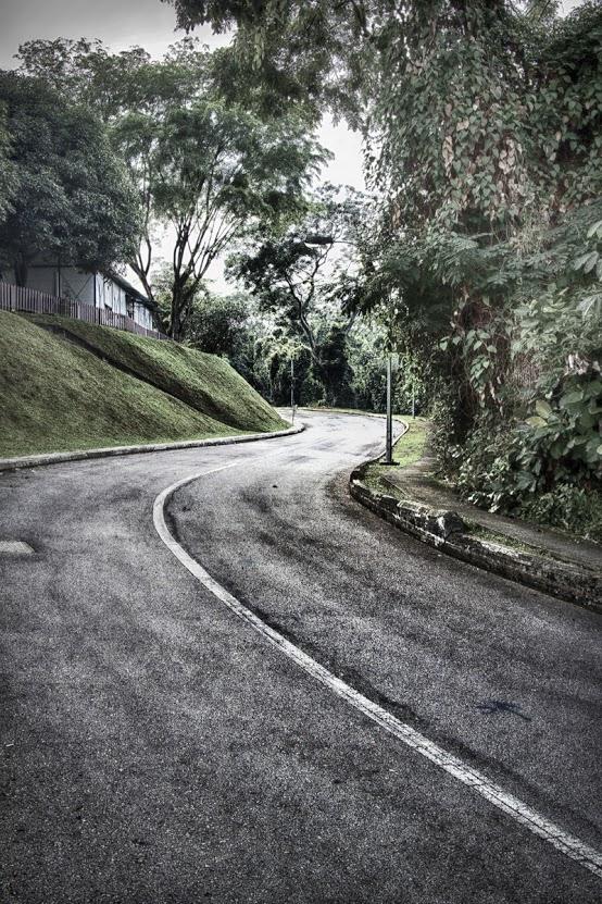 swirling+road_filtered+2+resized.jpg