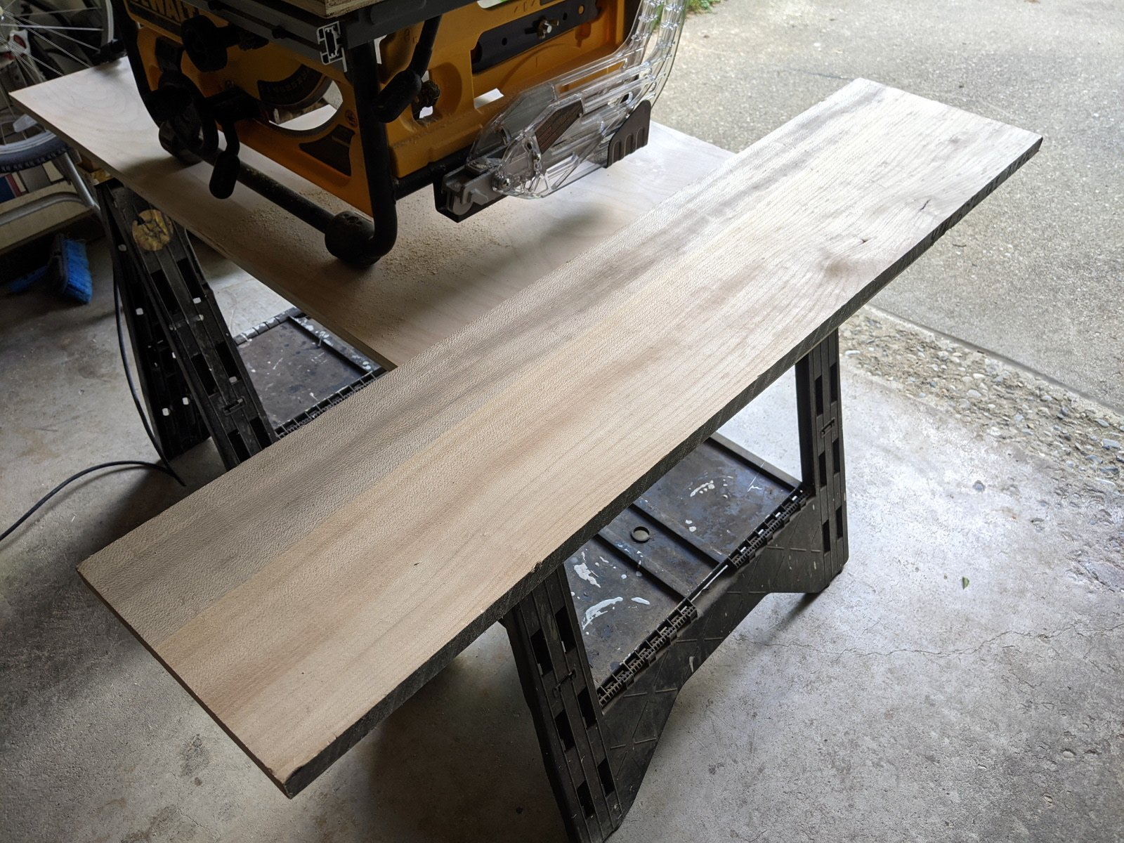 sycamore plank.jpg