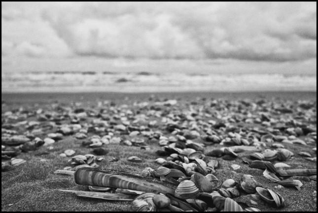 to-the-beach-1.jpg