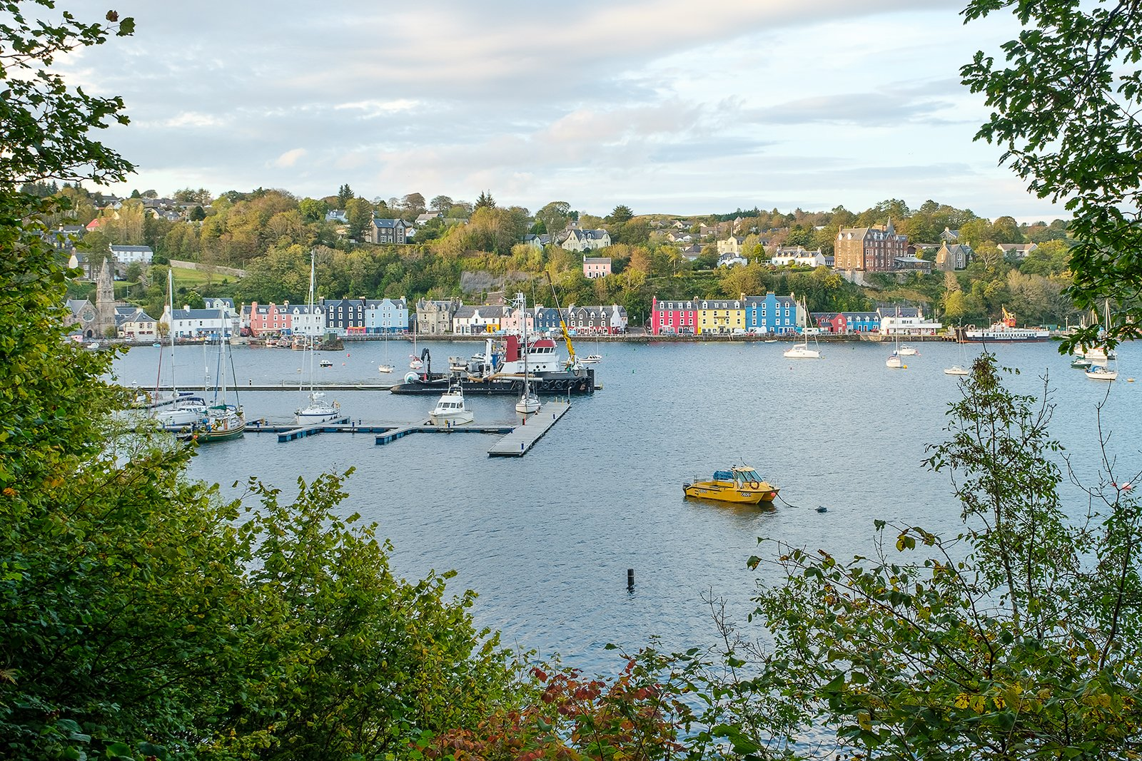 Tobermory from Aros wood.jpg