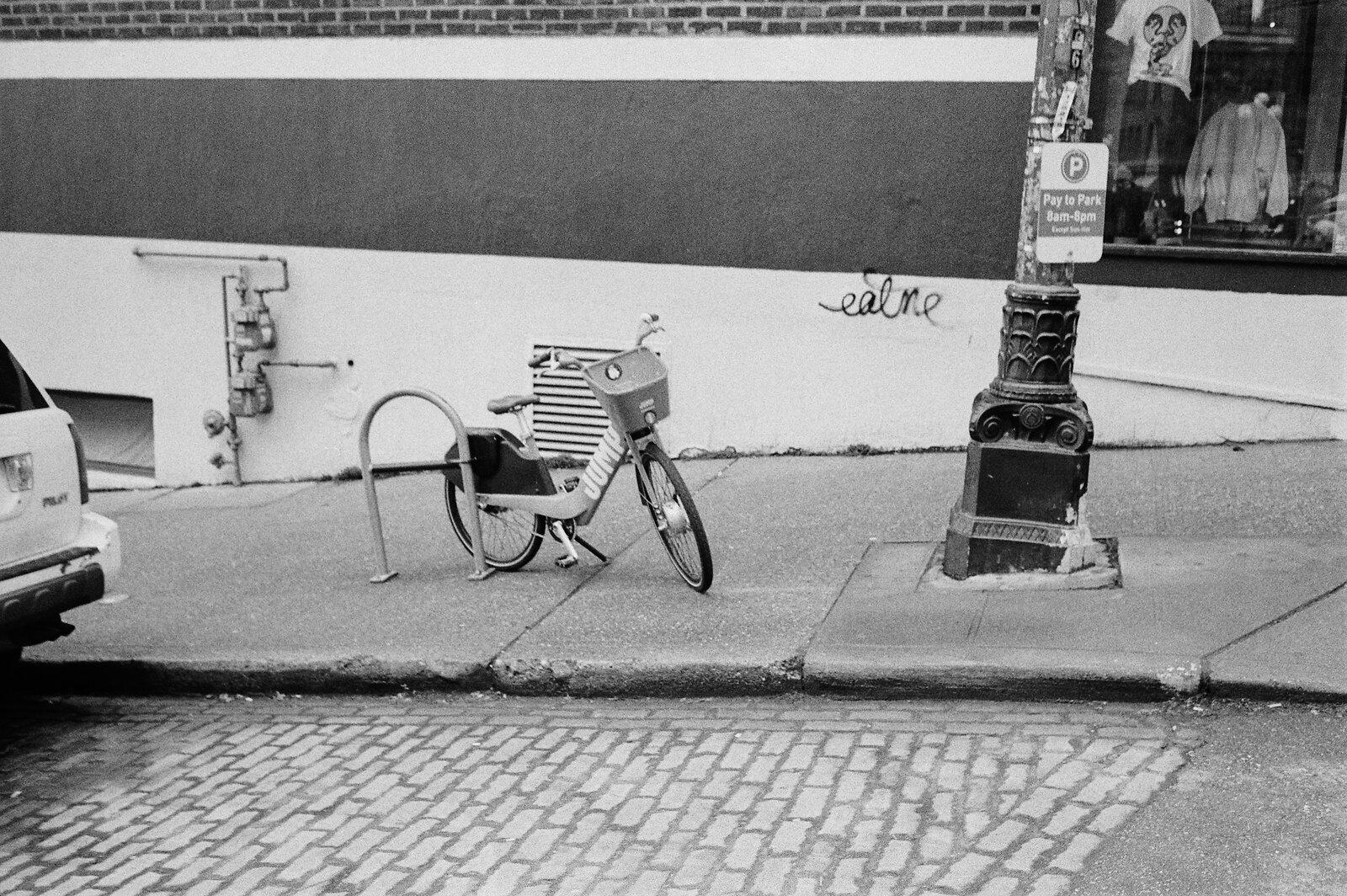 Untitled (30).jpg