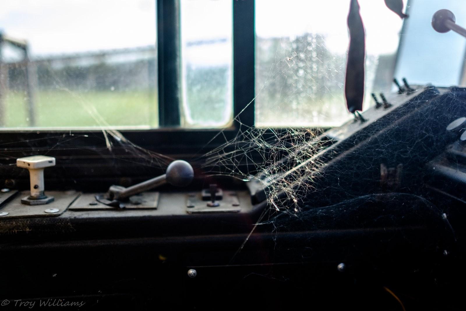 webs-1.jpg