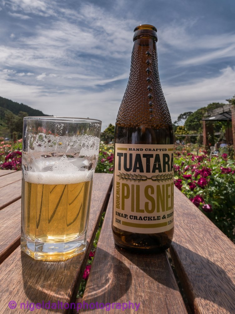 Wellington Tuatara lager in botanic garden.jpg