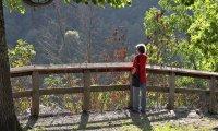West_Virginia02_s.jpg