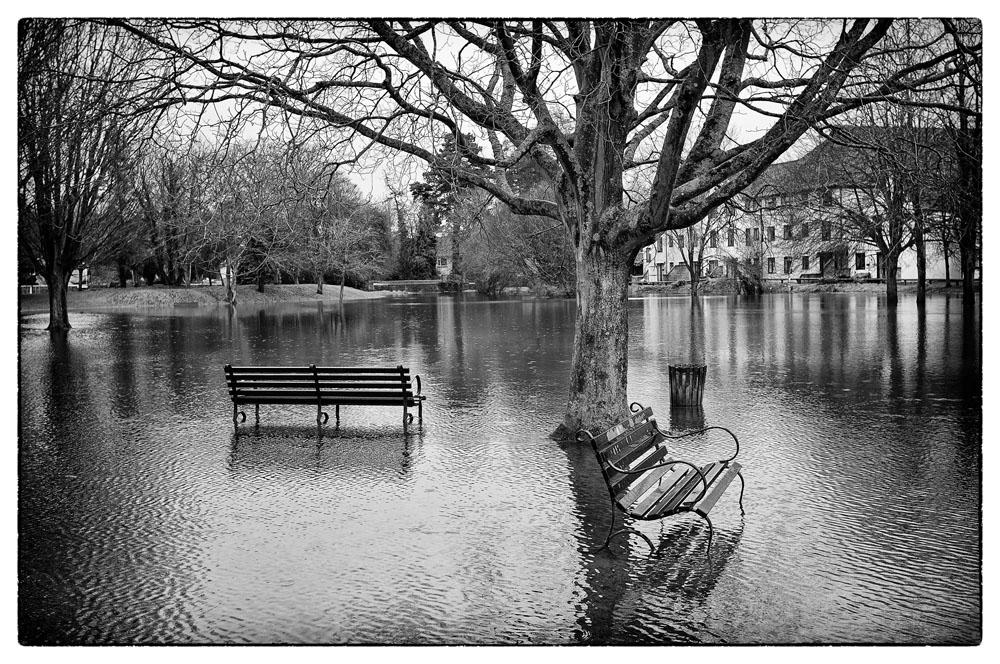 Wet_seat.jpg
