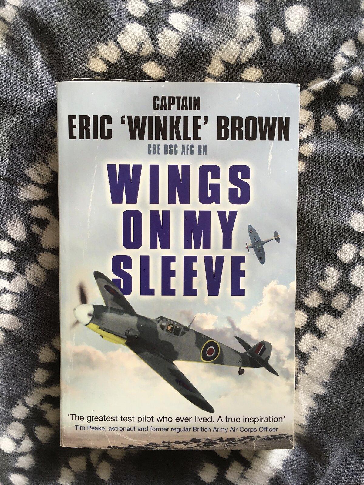 Wings On My Sleeve.JPG