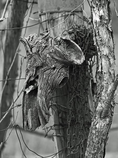 woodskull-L.jpg