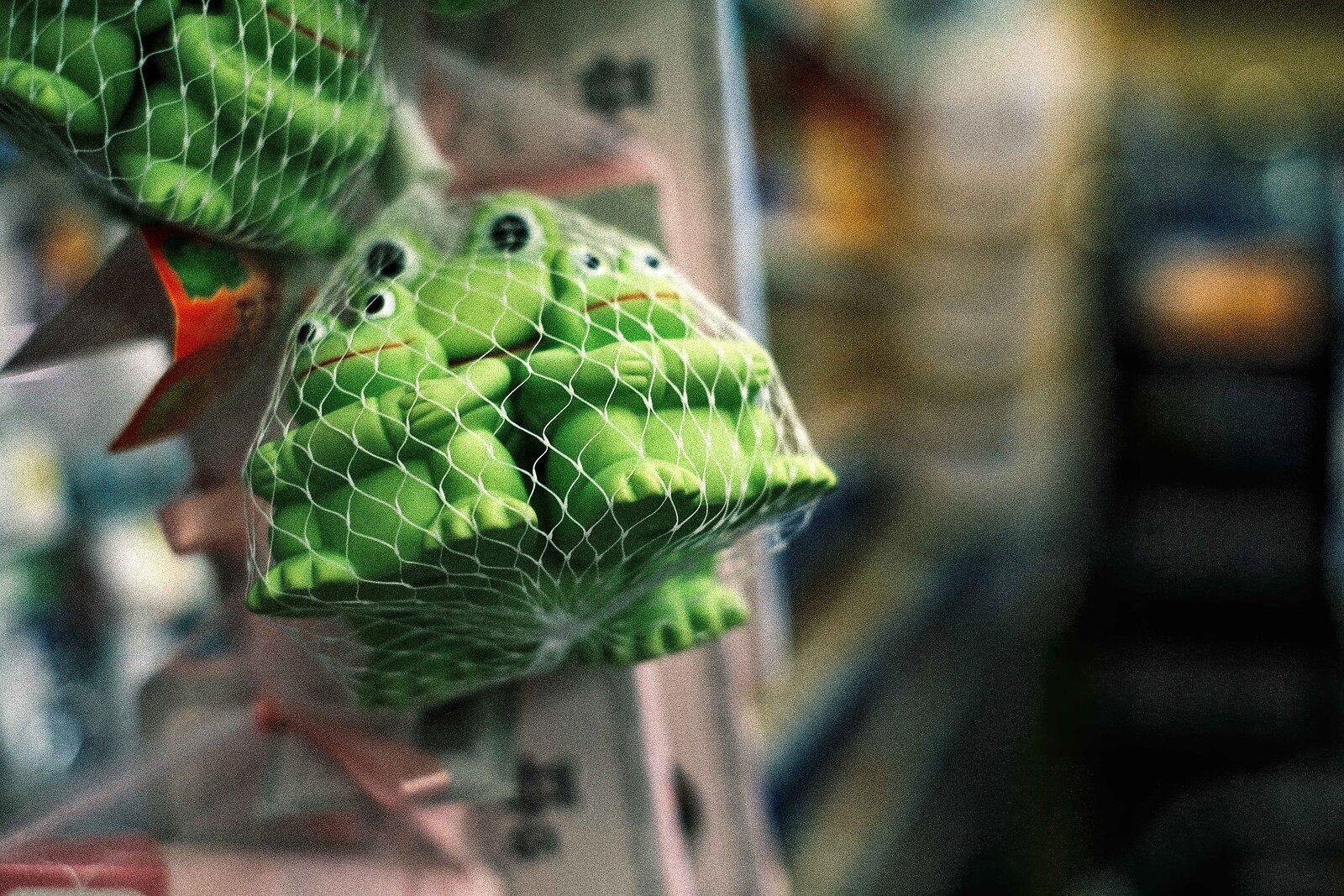 XPro3_July11_21_supermarket_frogs.jpg