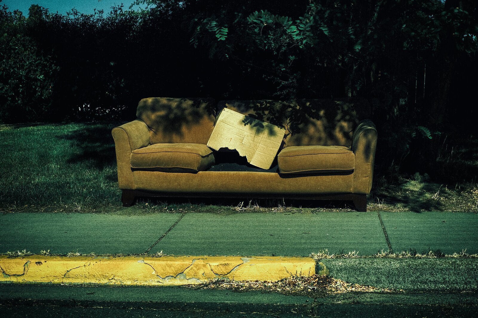 XPro3_July7_21_abandoned_couch(Xpro_62).jpg