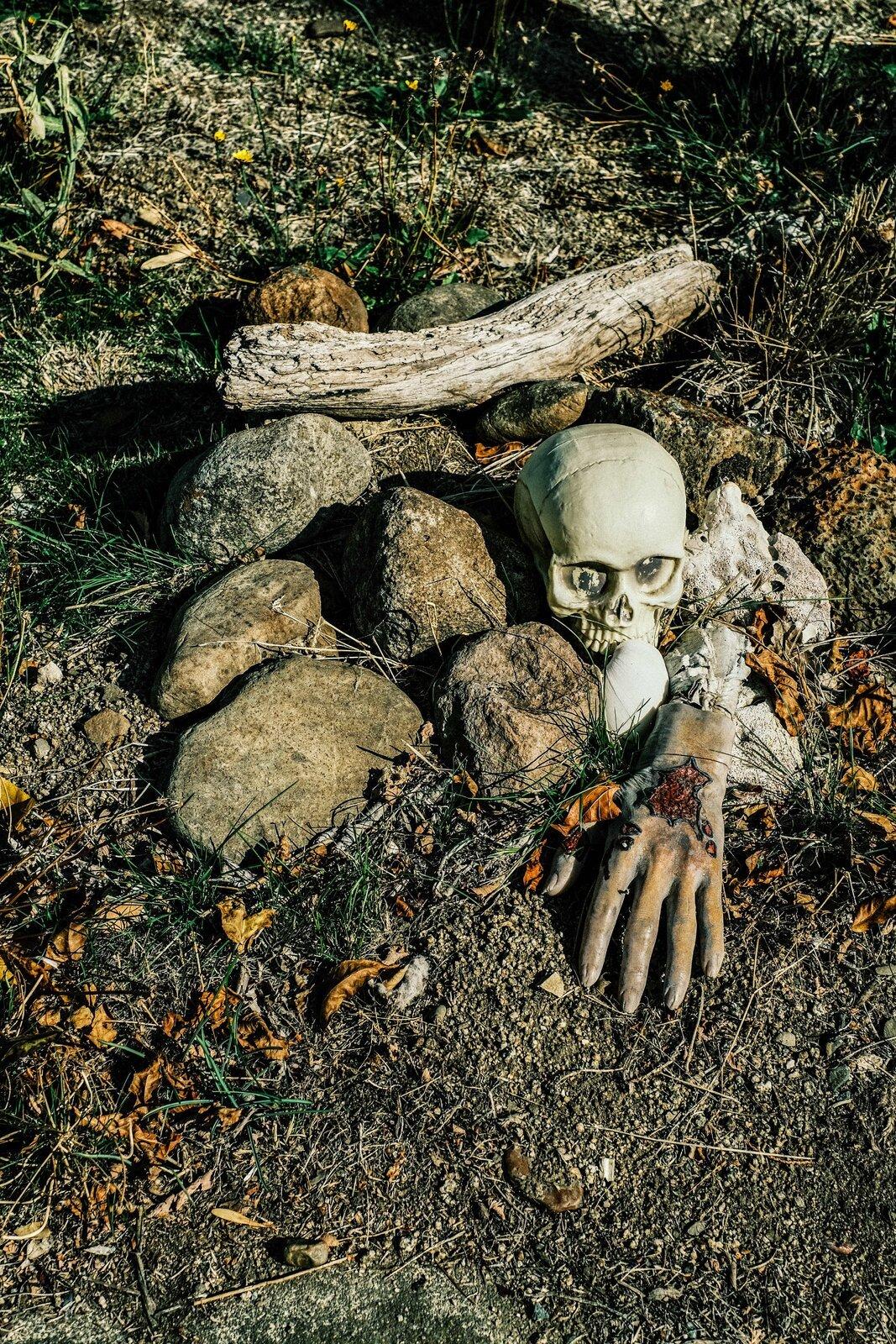 XPro3_Oct8_21_Halloween_yard(Ashland).jpg