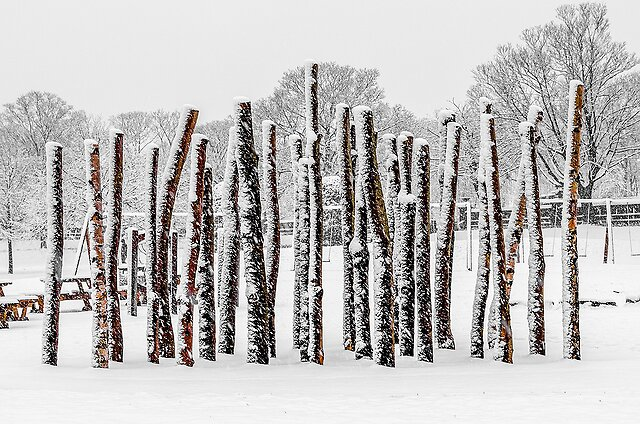 Pentax image thread.. - K5 with kit 18-55 WR  Posts by Harry Cutts, on Flickr  Snow3 by Harry Cutts, on Flickr
