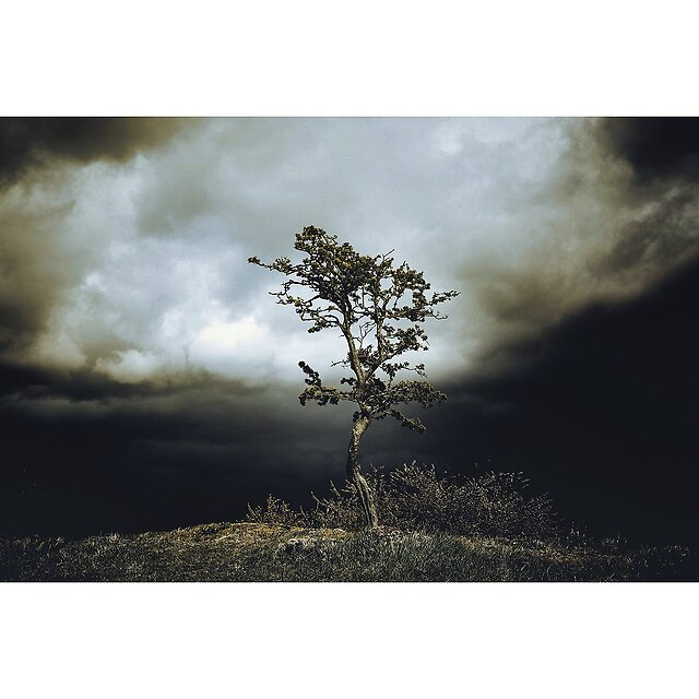 Today 401 - Dark clouds brewing over Blackness.