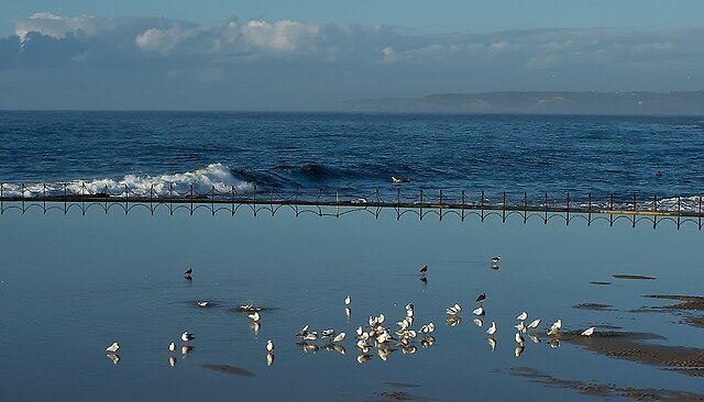 Beach/Ocean: Lets see yours. - Early morning at the canoe pool by kyte50, on Flickr   Debris by kyte50, on Flickr