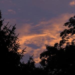 FZ200_Dawn_s_Early_light_008_DxO_Medium_