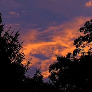 FZ200_Dawn_s_Early_light_008_DxO-1_Medium_