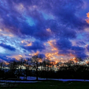 LX100_Oakwood_Cemetery_Christmas_2014_054_DxO_copy_Medium_